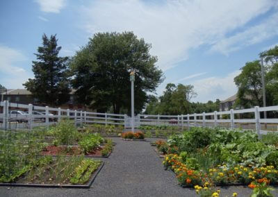 Outdoor common ground community garden at Korman Residential at Cherrywood