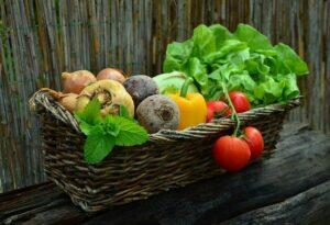a basket of vegetables from a backyard garden.